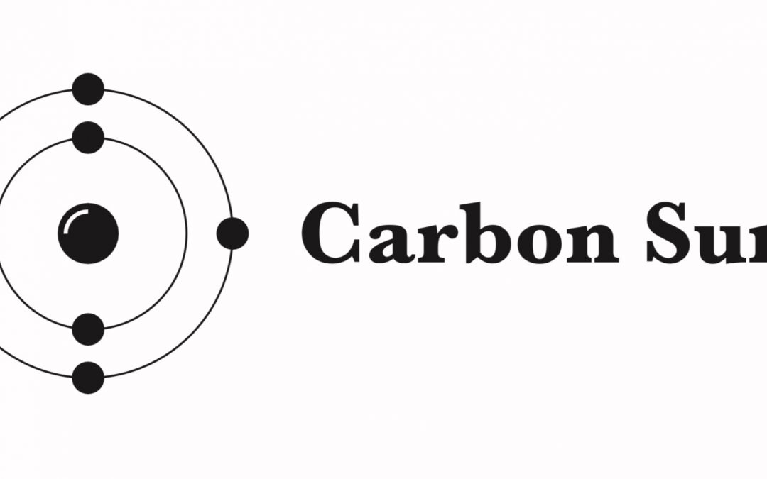 Carbon Sure Consulting